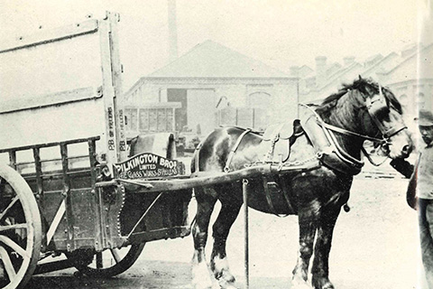Horse and cart for local glass deliveries.